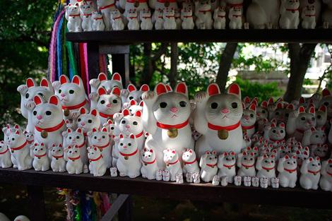 Goutokuji_Oct2008067m