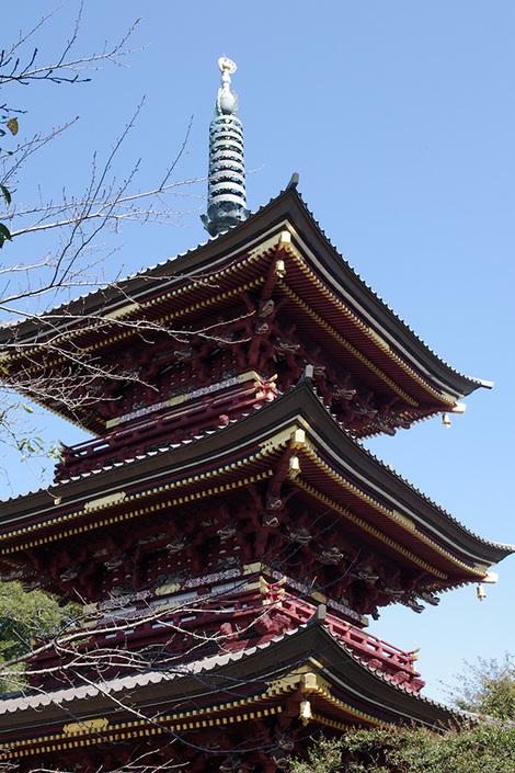 Itabashifudo_oct2009082m