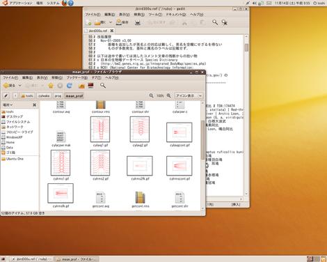 Ubuntu910scrn_2