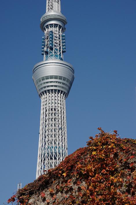 Tokyoskytree_nov2011114m