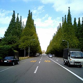 CA250034-S.jpg