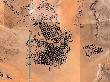 Saudiarabiancenterpivotsm